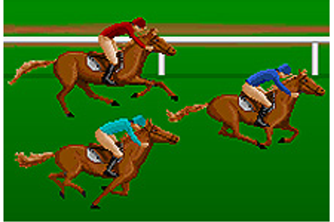 Horse Racing Steeplechase Game - Horse Games