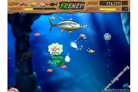 Feeding Frenzy 2 - Download Free Full Games | Arcade ...
