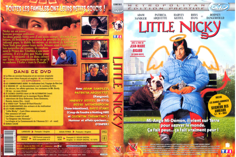Little Nicky (video game)