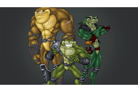 Battletoads Details - LaunchBox Games Database