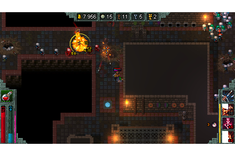 Heroes of Hammerwatch: Witch Hunter on Steam