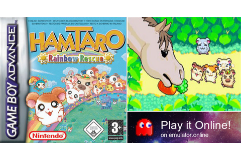 Play Hamtaro: Rainbow Rescue on Game Boy