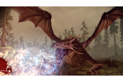 Dragon Age: Origins (PC): Amazon.co.uk: PC & Video Games