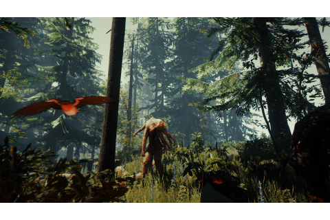 The Forest (PS4 / PlayStation 4) News, Reviews, Trailer ...