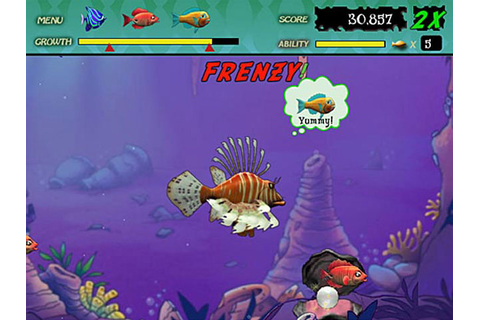 Feeding Frenzy Fish Game