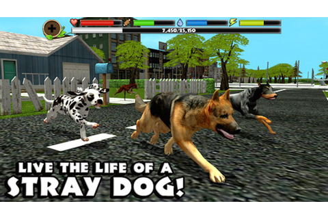 STRAY Dog Simulator - By Gluten Free Games -Compatible ...