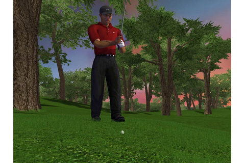 Golfistou v Tiger Woods PGA Tour 2003 - Games.cz