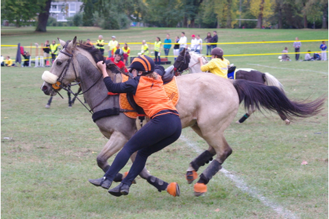 File:Swiss Pony Games 2011 - Finals - 118.JPG - Wikimedia ...