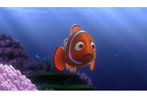 "Coral, character from ""Finding Nemo"". 