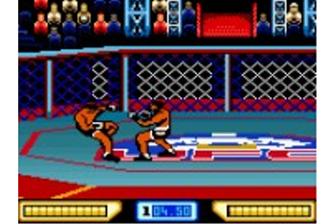 Ultimate Fighting Championship - Game Boy Color Game