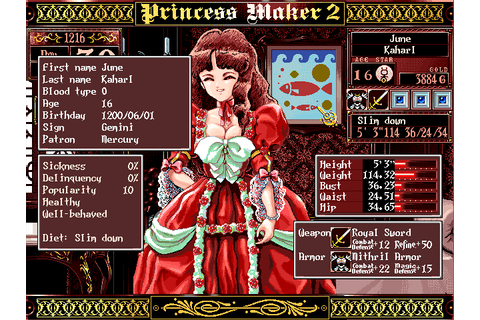 Princess Maker 2 (NTSC-J) ISO
