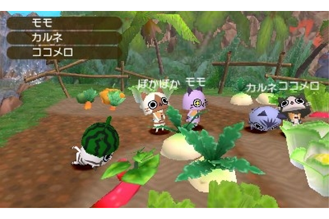 Monster Hunter Diary: Poka Poka Airou Village DX ...