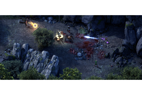 Pillars of Eternity Definitive Edition Free Download ...