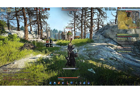 Black Desert Online game hotkeys ‒ defkey