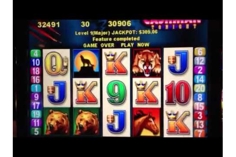 Mr. Cashman Tonight Wild Cougar Slot Major Jackpot Hit ...