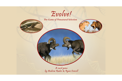 Evolve: The Game of Unnatural Selection by Andrew Rader ...