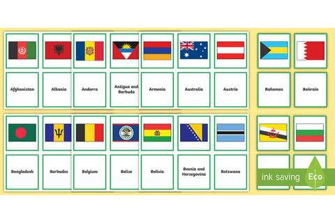 Flags of the World Matching Activity (teacher made)