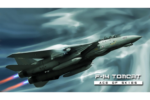 F-14 Tomcat : Ace Jet of Skies for Android - APK Download