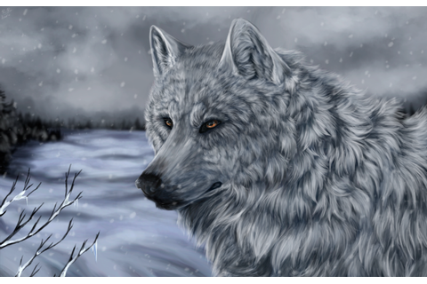 White Wolf of Icicle Creek + video by Virren on DeviantArt