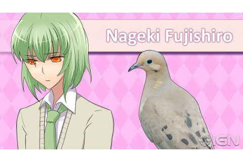 Hatoful Boyfriend Review - IGN