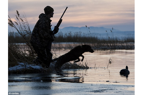 Family may be charged with hunter interference after ...