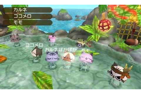 Monster Hunter Diary: Poka Poka Airou Village DX local ...