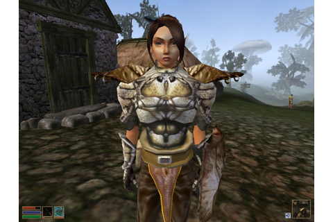 The Elder Scrolls III: Morrowind ~Game of the Year Edition ...