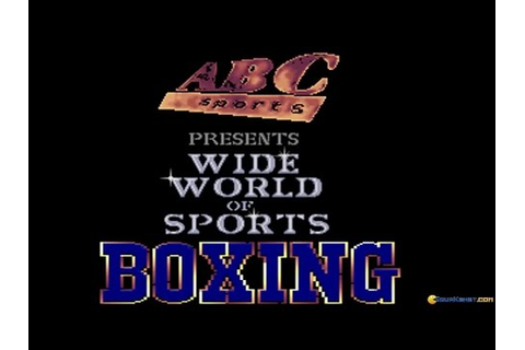 ABC Wide World of Sports Boxing gameplay (PC Game, 1991 ...