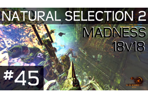 18v18 MADNESS (Natural Selection 2 - Game 45) - YouTube