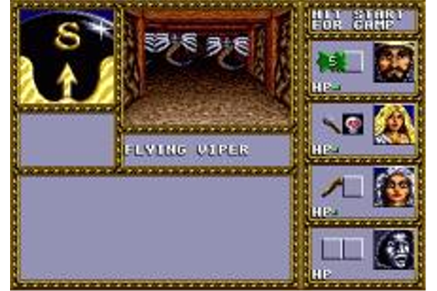 Dungeons & Dragons: Warriors of the Eternal Sun Download ...