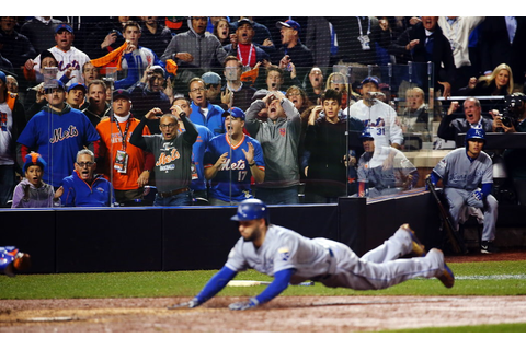 Are You in This Photo From Game 5 of the World Series ...