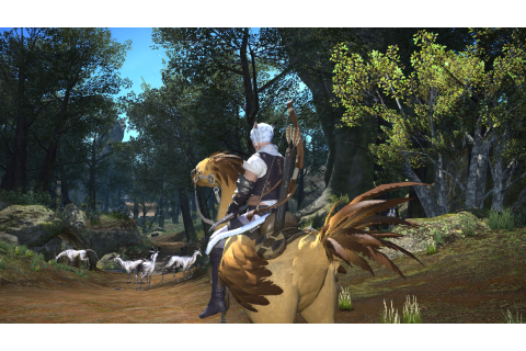 Download FINAL FANTASY XIV: A Realm Reborn Full PC Game