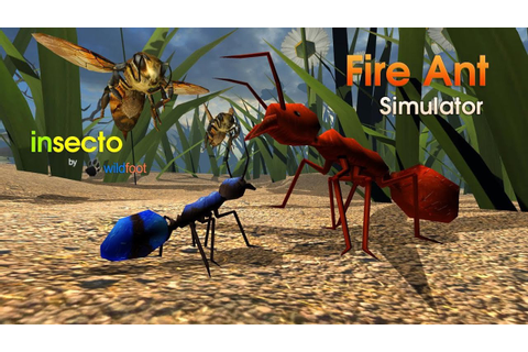 Fire Ant Simulator - Android / iOS - Gameplay HD - YouTube