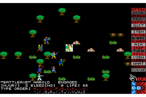 Download Wizard's Crown - My Abandonware