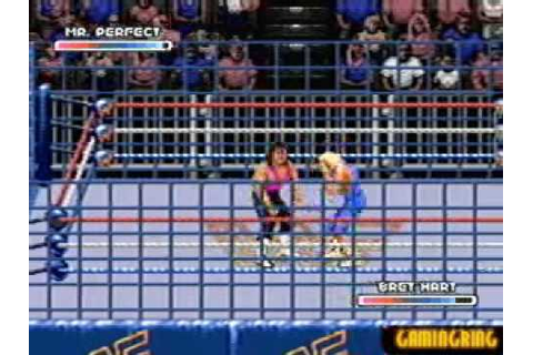 WWF Rage in the Cage Gameplay video 1 - YouTube