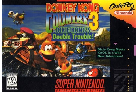 Donkey Kong Country 3: Dixie Kong's Double Trouble! (1996 ...