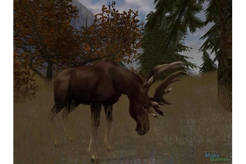 Cabelas GrandSlam Hunting 2004 Trophies Download Free Full Game ...