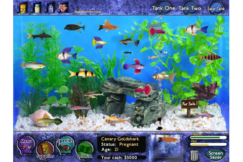 Fishing Master Android Game Download | Game Android
