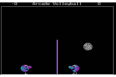 Download Arcade volleyball action for DOS (1987 ...