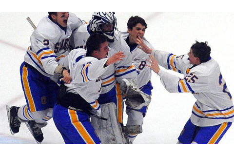 PHOTO GALLERY: Section II ice hockey championship game ...