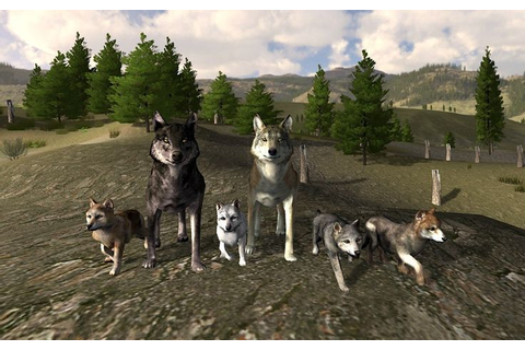 Wolf Online has taken that experience and adds both co-op ...