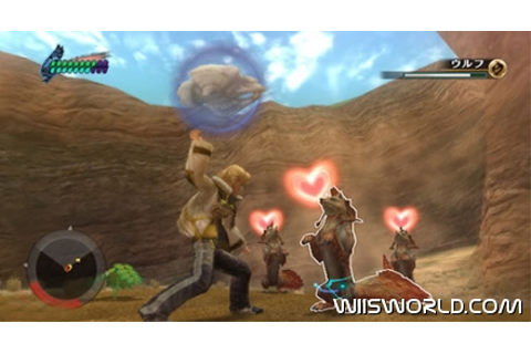 Final Fantasy Crystal Chronicles: The Crystal Bearers on Wii