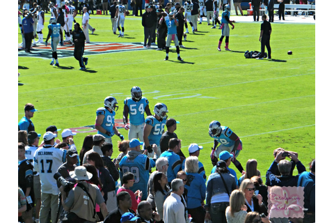 Carolyn in Carolina: Carolina Panthers Game
