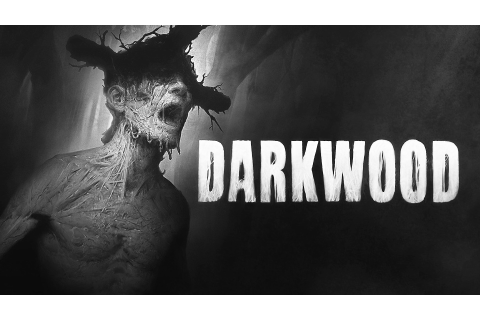 Darkwood Review – This Twist on Survival Horror Gets Lost ...