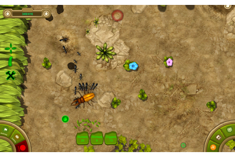Ant Queen - Download Free Full Games | Strategy games