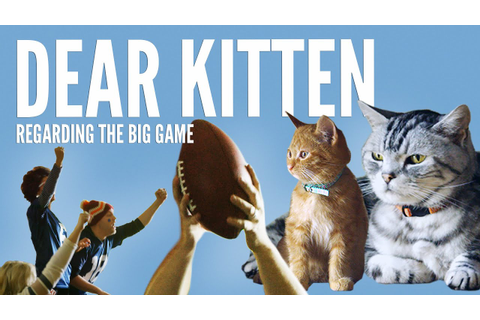 Dear Kitten: Regarding The Big Game - YouTube