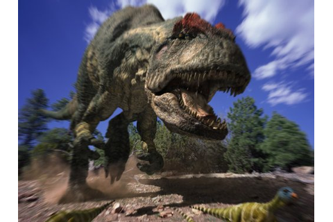 Amazon.com: Allosaurus: A Walking with Dinosaurs Special ...