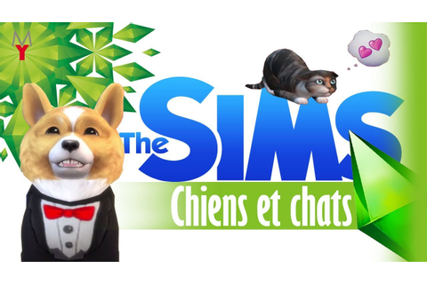 sims 4 chiens et chats ENFIN L'ANNONCE - YouTube