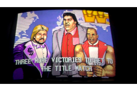 WWF Superstars Arcade Game - No One Can Beat.. Million ...