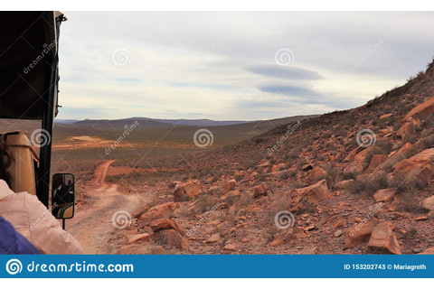 On safari in South Africa editorial stock photo. Image of ...